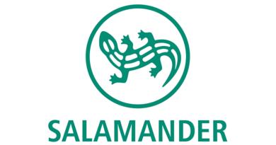 Логотип Salamander GmbH